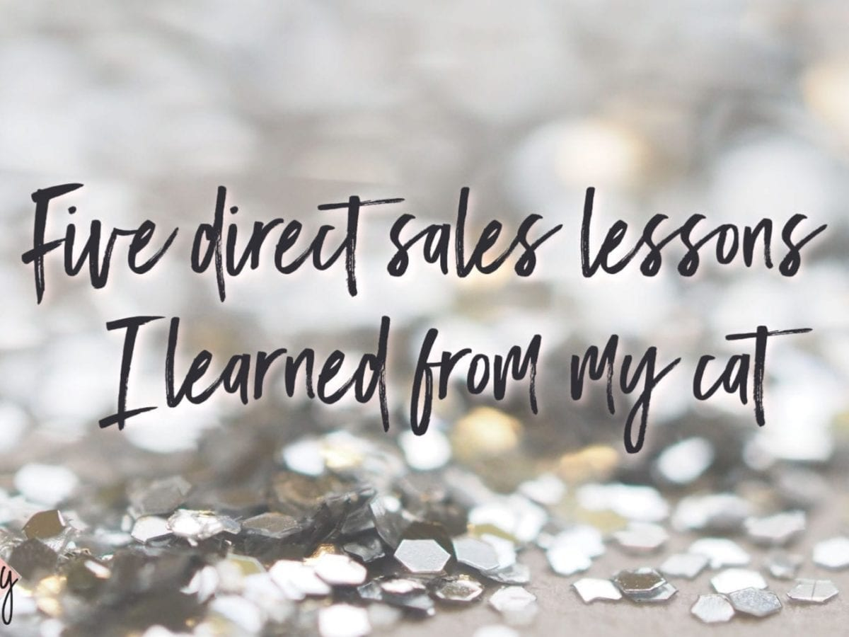 Five direct sales lessons I learned from my cat Business Coach Windy Lawson