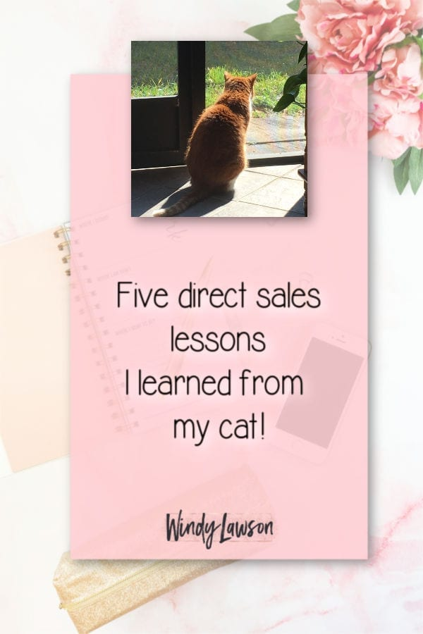 Five direct sales lessons Windy Lawson